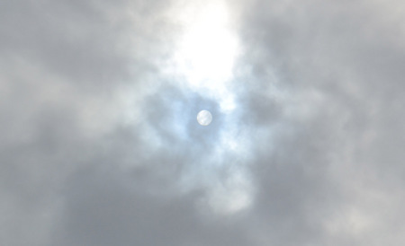 mogu-sun-20190708.jpg
