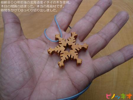 snow-flower01.jpg